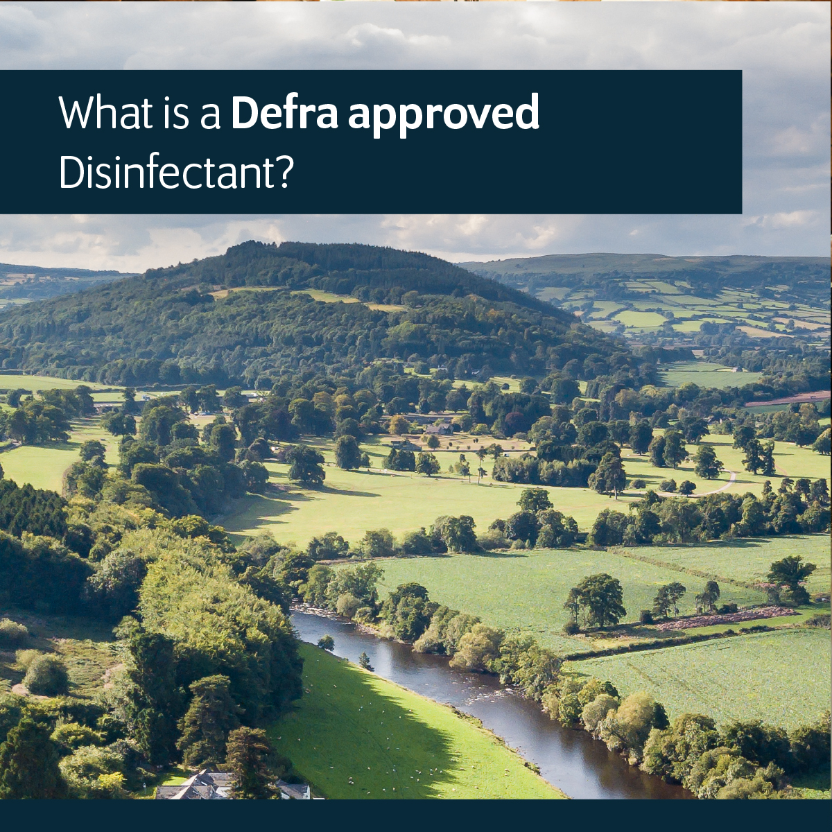 What is a Defra Approved Disinfectant?
